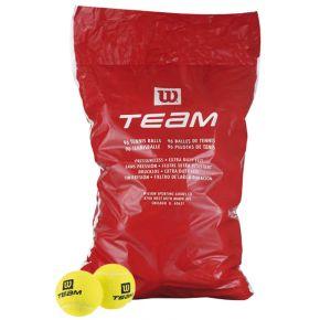0000224814-team-trainer-96ks.jpg