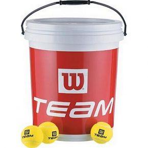 0000224813-team-trainer-72ks.jpg