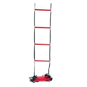 0000225905-ladder.jpg