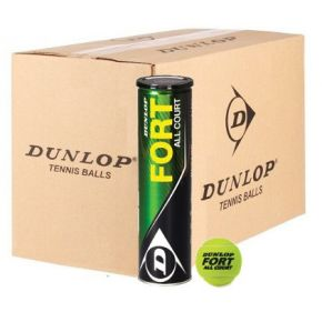 0000224809-dunlop-fort-all-court-karton-i.jpg