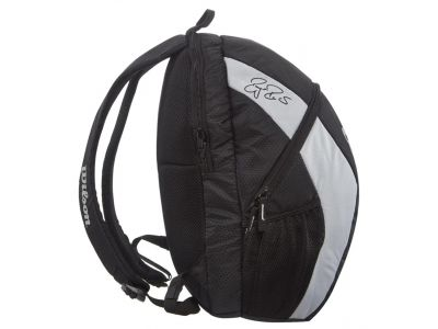 rf team backpack III.jpg