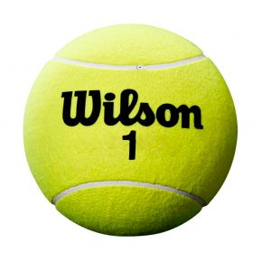 Roland garros mini ball yellow I.jpg